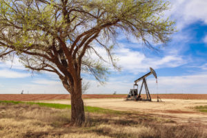 pumpjack, West Texas, cottonwood tree